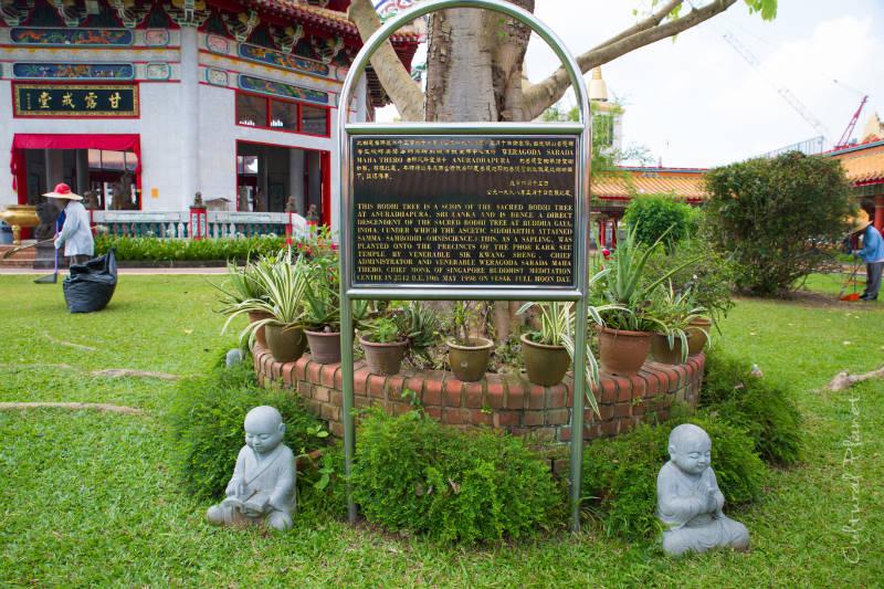 Templo budista en Singapur