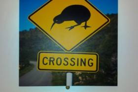 Nueva Zelanda, alguna curiosidad