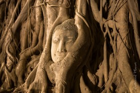Bangkok y Ayutthaya