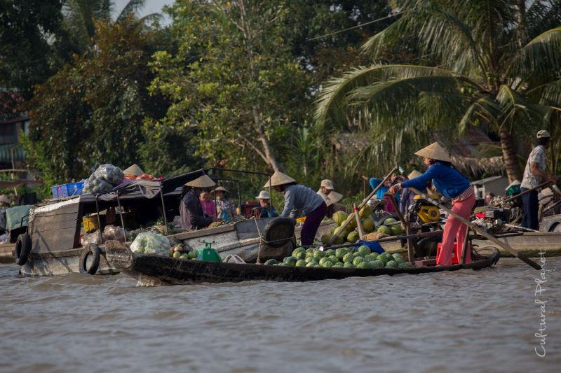 Mercado flotante Mekong Can Tho